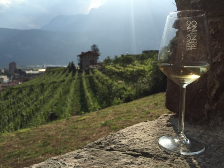 THE BEST WHITE WINES FROM ALTO ADIGE FOR COLD SEASON, PERFECT WITH STEWS AND SOUPS