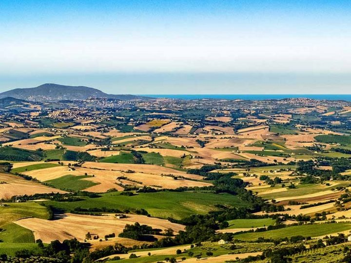 MARCHE: HILLS, MOUNTAINS, SEA AND … WINE!