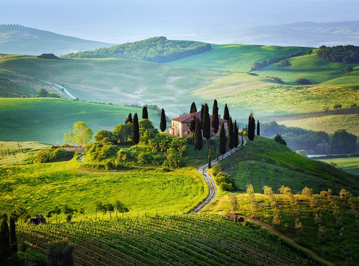 BEST RED WINES FROM TUSCANY
