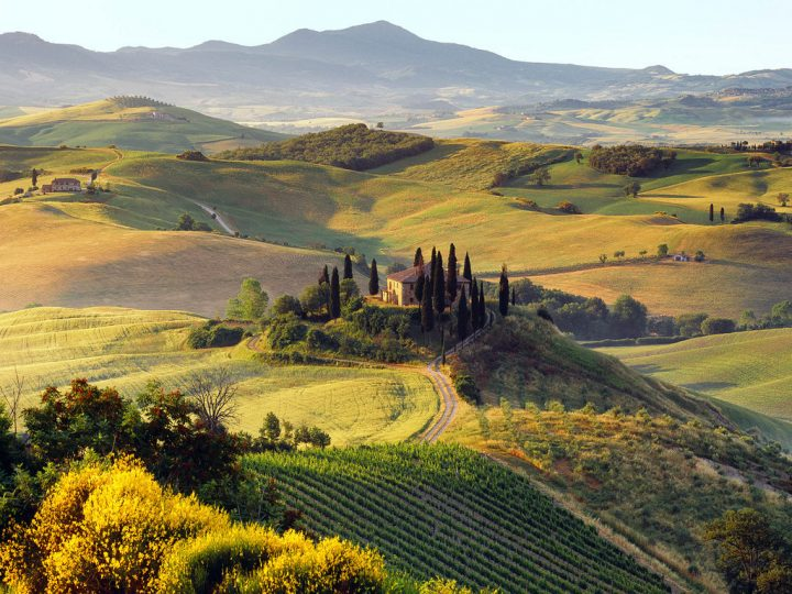 TOP 3 UMBRIAN WINES